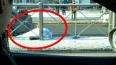 В Петербурге автомобиль сбил насмерть бабушку