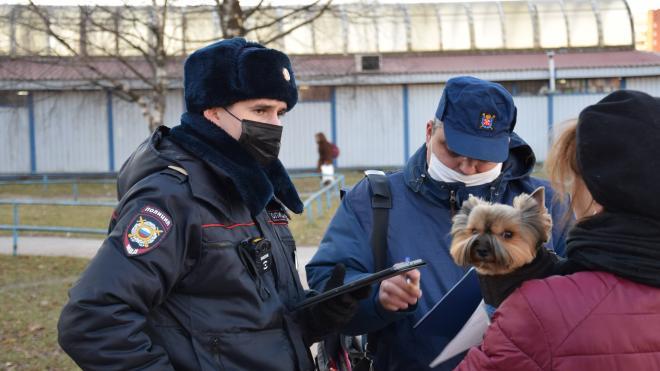 Владельцев собак Кировского района проверили на соблюдение законодательства