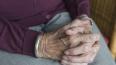 Грабитель до смерти напугал пожилую жительницу Отрадного