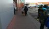 В Петербурге эвакуировали всех из Генконсульства Финляндии