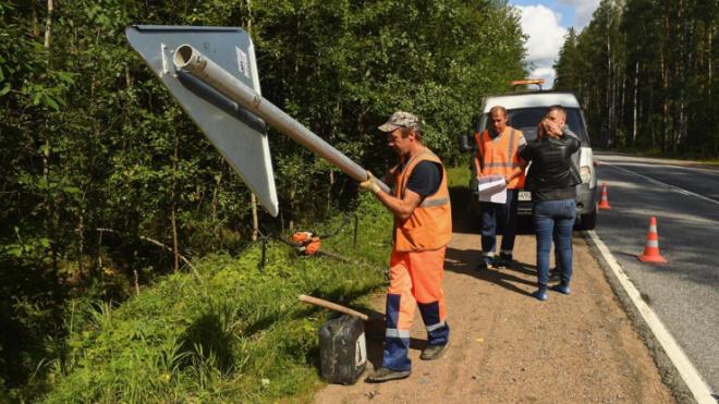 Водителей и пешеходов дополнительно защитят на аварийно-опасных участках региональных дорог Ленобласти