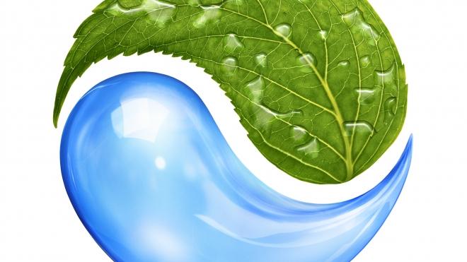 Во Фрунзенском районе пройдет выставка работ из экологических материалов