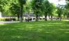 В парках и скверах Выборга начался покос травы
