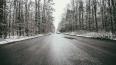 В Петербурге продолжают идти мокрый снег и дождь