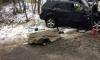 В Ленобласти в результате лобового ДТП с маршруткой погиб водитель