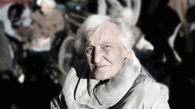 В СПб появилась еще одна подгруппа по проведению пенсионного референдума