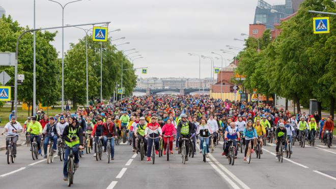 Смольный поделился подробностями Большого велопарада в Петербурге