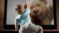 В Бурятии телевизор убил 2-летнего малыша