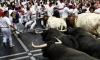 Любовь к забегам быков в Испании привела 21 человека в больницы