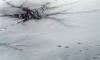 В Приморском районе под лед провалилась машина с женщиной в салоне