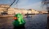 На реке Фонтанке в Петербурге плавала гигантская зеленая утка