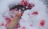 Петербуржец 26 раз ударил сожительницу по голове и после задушил