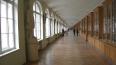 В Петербурге иногородних студентов поселят вместе ...