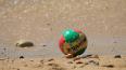 В городе на Неве пройдет финал студенческой лиги по пляж...