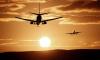 Петербуржцы застряли в аэропортуКорфу из-за птицы, столкнувшейся с лайнером