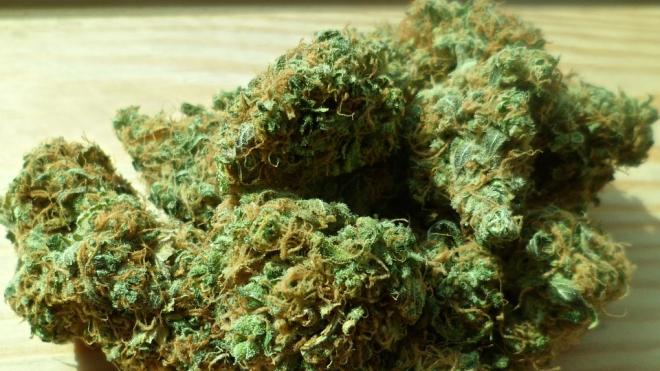 В Ленобласти нашли 6 кг  наркотиков