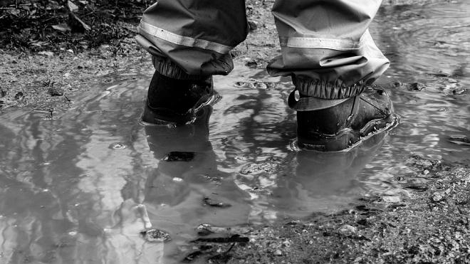 У поселка Торфяное завод нечаянно разлил загрязненные сточные воды
