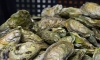 В Пулково задержали почти тонну живых устриц сомнительного качества