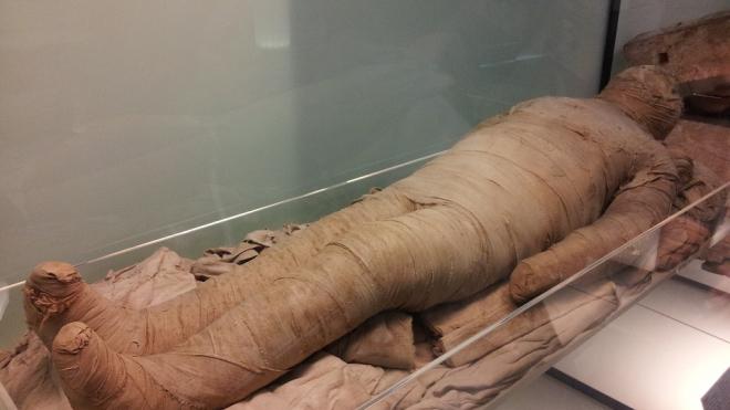 Мумия из Эрмитажа пройдет обследование в Клинической больнице