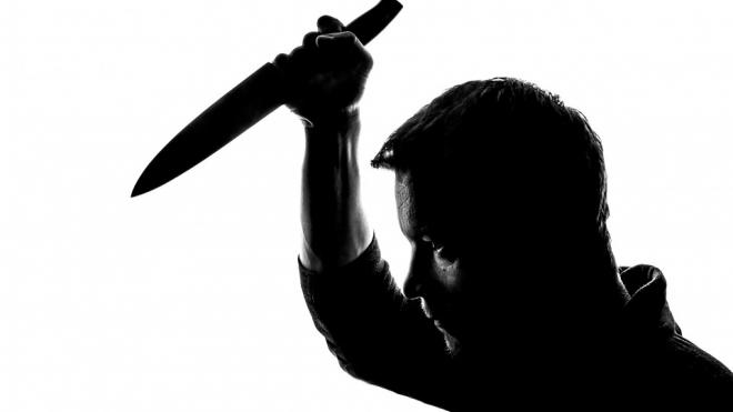 В центре Петербурга рецидивист ранил ножом пенсионерку