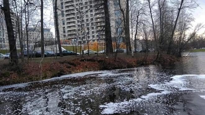 Разлив нефти в районе Ушаковской набережной в Петербурге ликвидирован