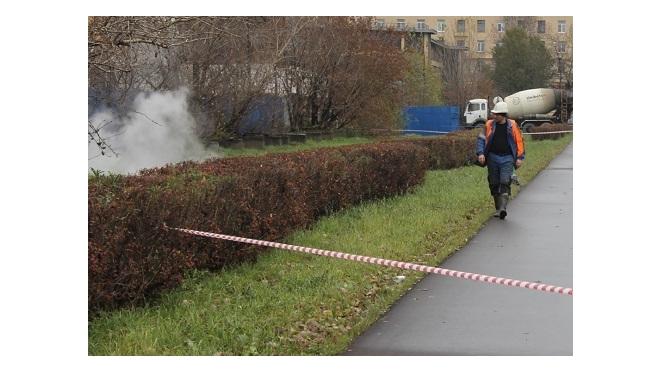 На проспекте Космонавтов прорвало трубу с кипятком