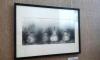 В Выборге откроется выставка Ивана Зубарева