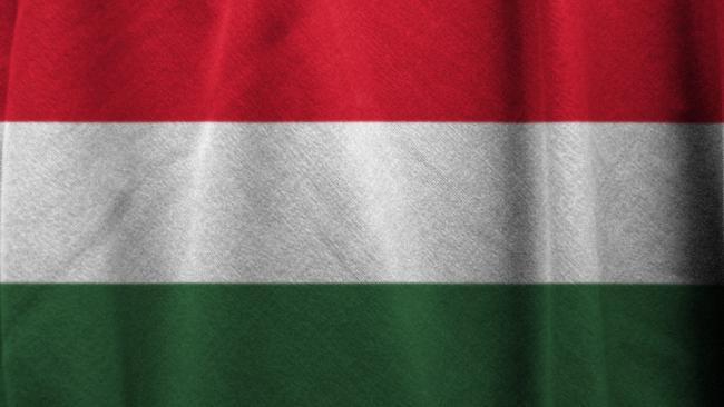 """Венгрия ожидает получить первую партию """"Спутника V"""" в феврале"""