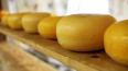 В Петербурге уничтожили 112 кг сыров и колбас из Европы