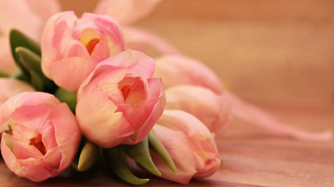 В преддверии 8 марта букет тюльпанов стал стоить почти 800 рублей