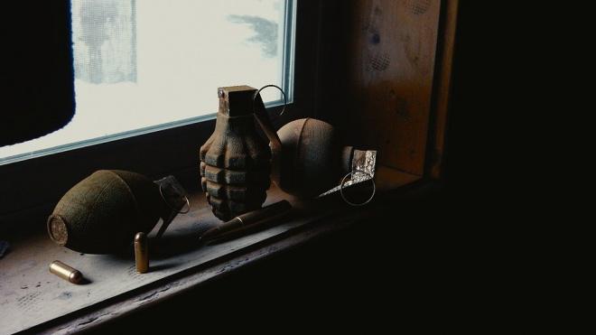 В Стрельне нашли осколочные гранаты времён ВОВ