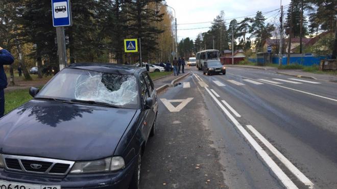 В Левашово сбитый летчик пробил лобовое стекло и крышу машины