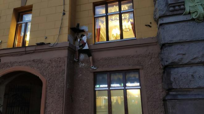 В центре Петербурга паркурщики сноваобвороваликота Елисея