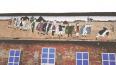 В Павловске художники закрасили античные рисунки на здан...