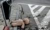 На проспекте Большевиков двухлетнего ребенка сбил велосипед