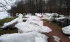 """После наводнения в Сестрорецке в парке """"Дубки"""" остались крупные ледяные глыбы"""