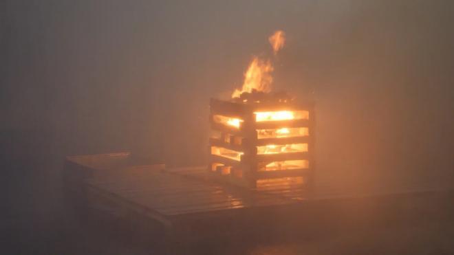Мама и сын погибли в пожаре из-за неисправной печи в Горелово