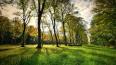 В Полежаевском парке установятскамейки к 2024 году