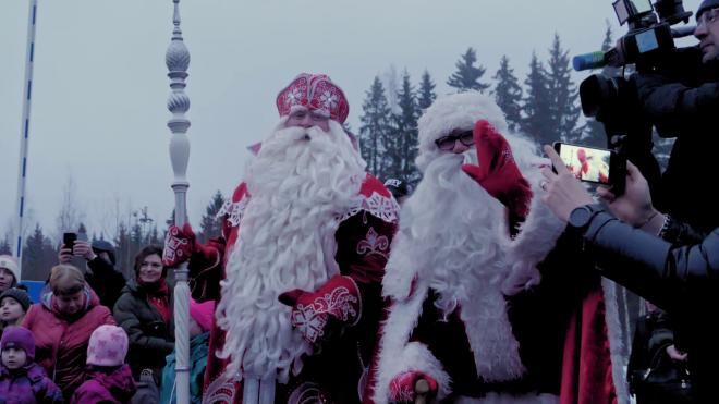 Роспотребнадзор Петербурга рассказал, как принимать у себя Дед Мороза и Снегурочку