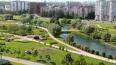 Защитники парка Малиновка заявили, что не намерены ...