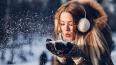 Вторник в Ленобласти обещает быть снежным, но теплым
