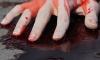 В Красносельском районе пенсионер убил себя ударом ножа в сердце