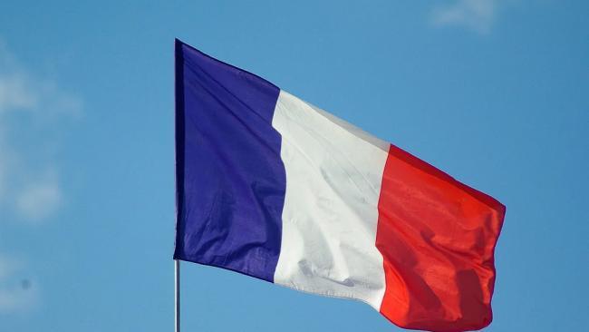 Во Франции обнаружили новый штамм коронавируса