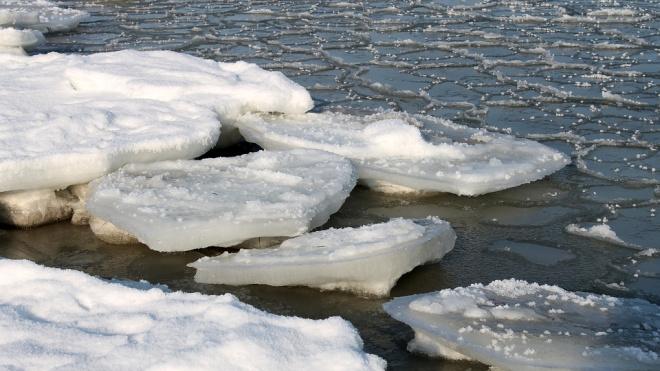 МЧС сняли двух петербургских подростков сотколовшейся льдины