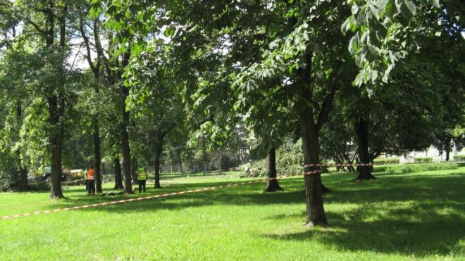 В Деминском саду не будут строить апарт-отель