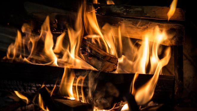 В Выборгском районе двое мужчин на даче сгорели заживо