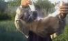 Трое живодеров из Рязани убили кота при помощи мощной петарды и скотча