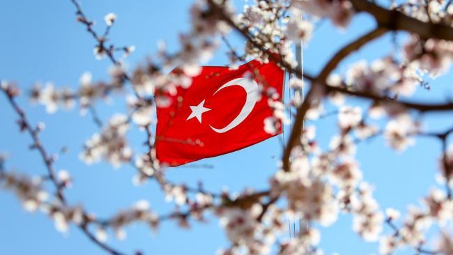 Турция продлила ПЦР-тестирование для туристов до конца марта