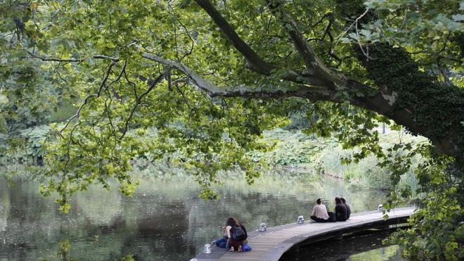 В Петербурге составили рейтинг самых популярных садов и парков