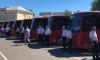 Из Петербурга и Кингисепп запустили 17 новых автобусов